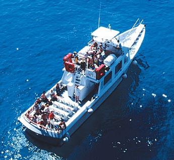 barcacapri.jpg