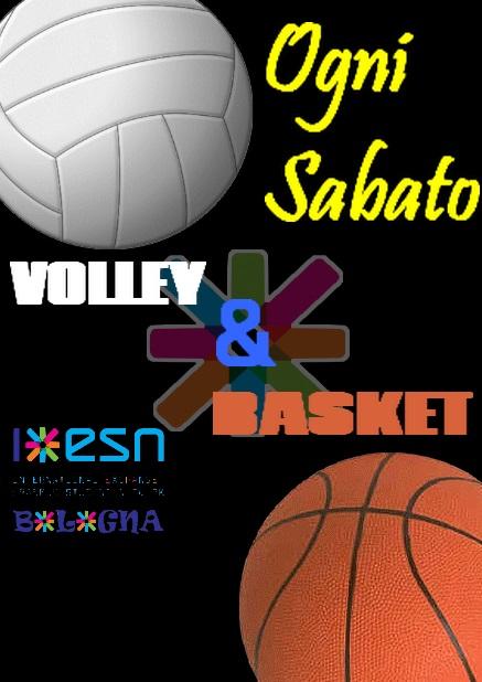 basket_volley.png