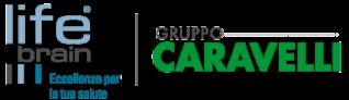 caravelli-group-lifebrain.png