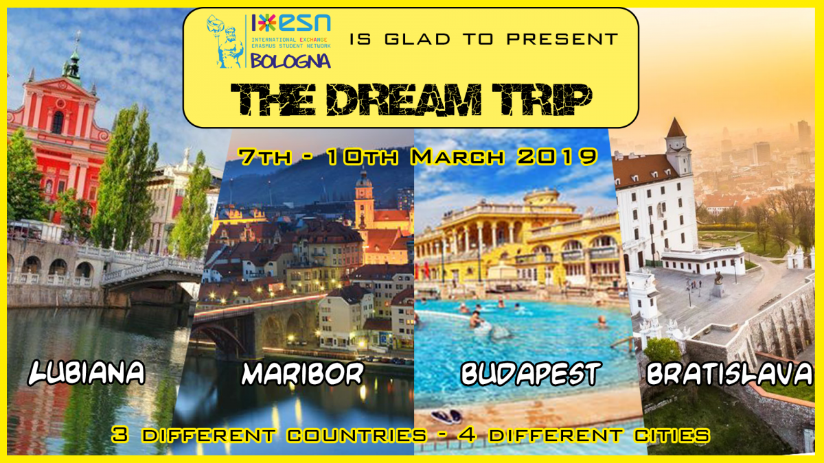 dreamtrip2019_banner.png