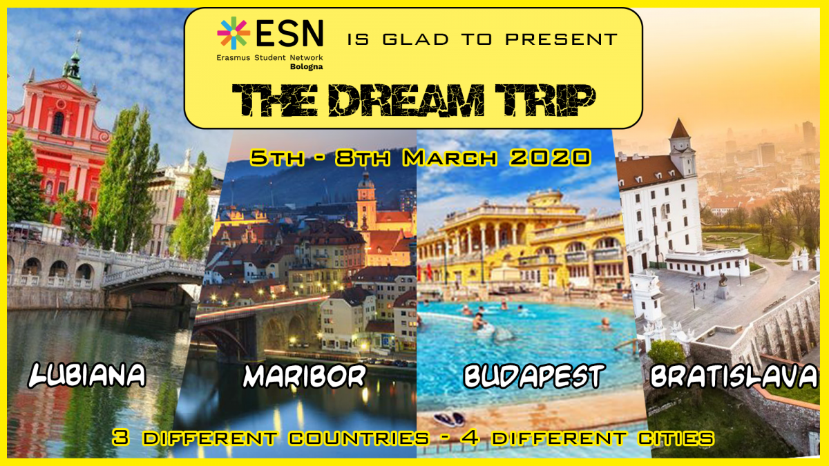 dreamtrip2020_banner.png