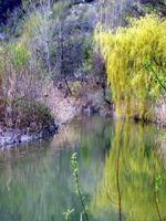 Parco_del_Paleotto2.jpg