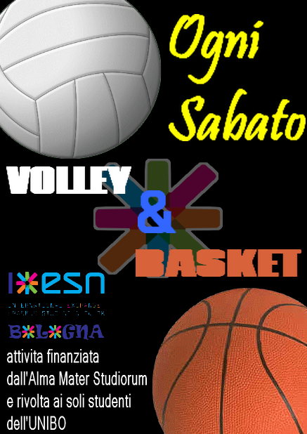 basket_volley.png