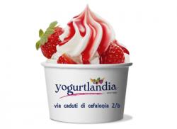 yogurtlandia.jpg