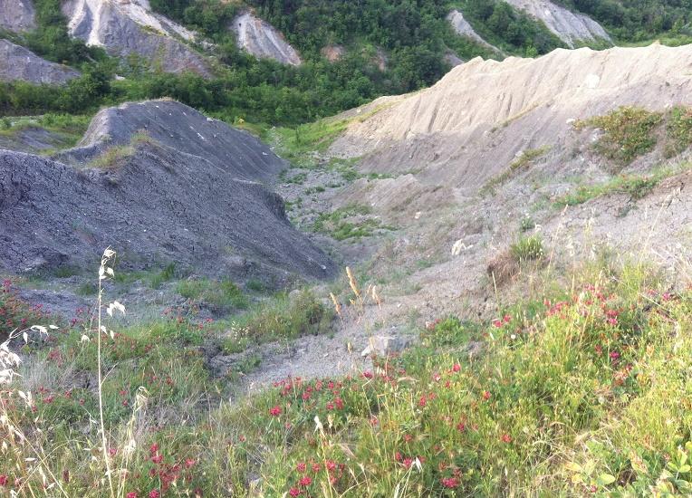 trekking3.jpg